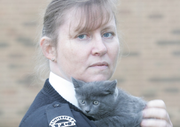 Inspector Janet Proudlock with one of the kittens which was abandoned last Christmas.